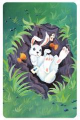 Dixit: królik