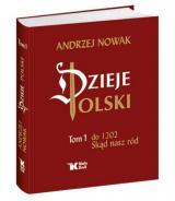 Obrazek książka, komiks Dzieje Polski. Tom 1. Do 1202 Skąd nasz ród
